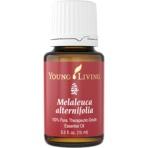 Melalueca Alternafolia